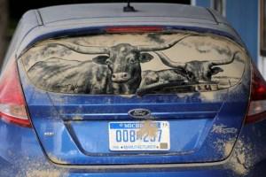 Toro pintura para coches